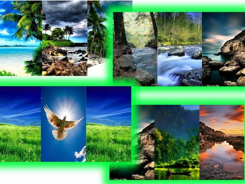 Картинки на самсунг с природа тройные картинки